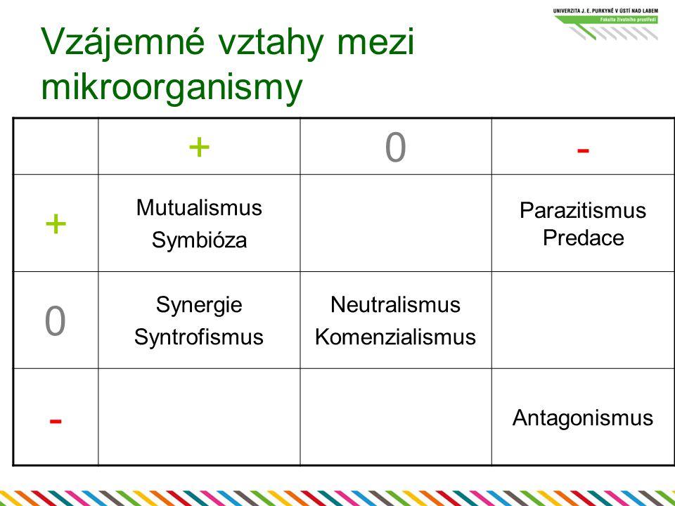 Vzájemné vztahy mezi mikroorganismy +0- + Mutualismus Symbióza Parazitismus Predace 0 Synergie Syntrofismus Neutralismus Komenzialismus - Antagonismus