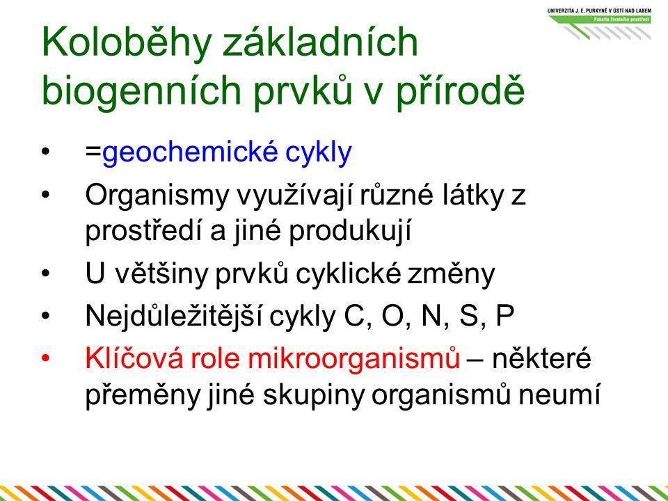 Koloběhy základních biogenních prvků v přírodě =geochemické cykly Organismy využívají různé látky z prostředí a jiné produkují U většiny prvků cyklick