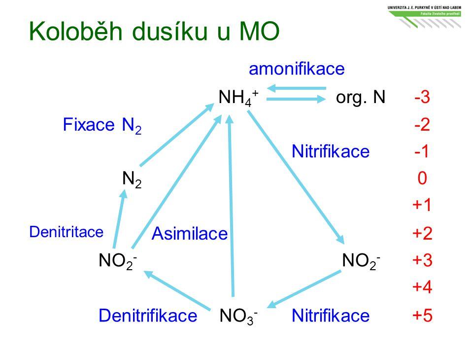 Koloběh dusíku u MO NH 4 + org. N-3 Fixace N 2 -2 Nitrifikace N2N2 0 +1 Denitritace Asimilace+2 NO 2 - +3 +4 DenitrifikaceNO 3 - Nitrifikace+5 amonifi