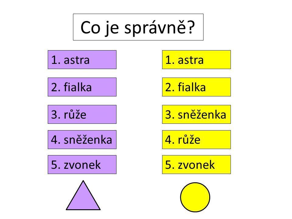 Co je správně? 2. fialka 3. růže 4. sněženka 5. zvonek 1. astra 2. fialka 3. sněženka 1. astra 4. růže 5. zvonek