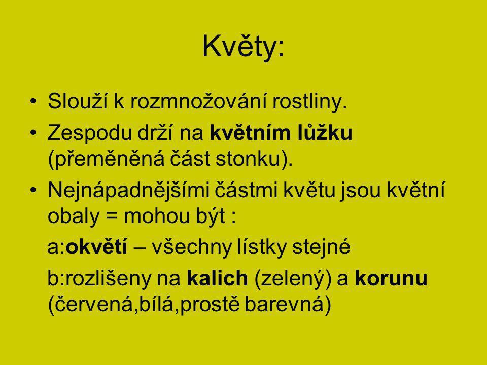 http://byliny.apatykar.info http://web2.mendelu.cz http://www.vyukovematerialy.cz http://www.guh.cz www.wikipedie.cz