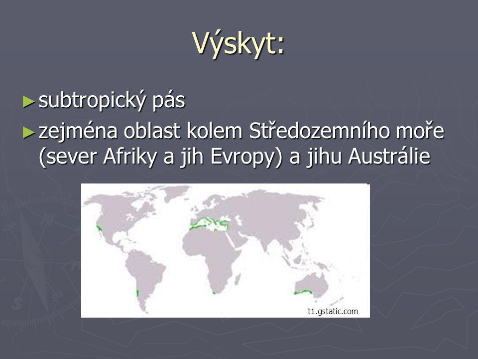 Výskyt: ► subtropický pás ► zejména oblast kolem Středozemního moře (sever Afriky a jih Evropy) a jihu Austrálie t1.gstatic.com