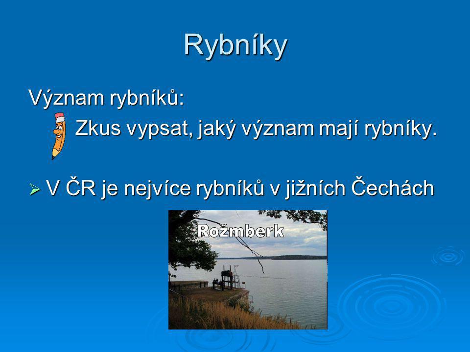 Rybníky Význam rybníků: Zkus vypsat, jaký význam mají rybníky.  V ČR je nejvíce rybníků v jižních Čechách