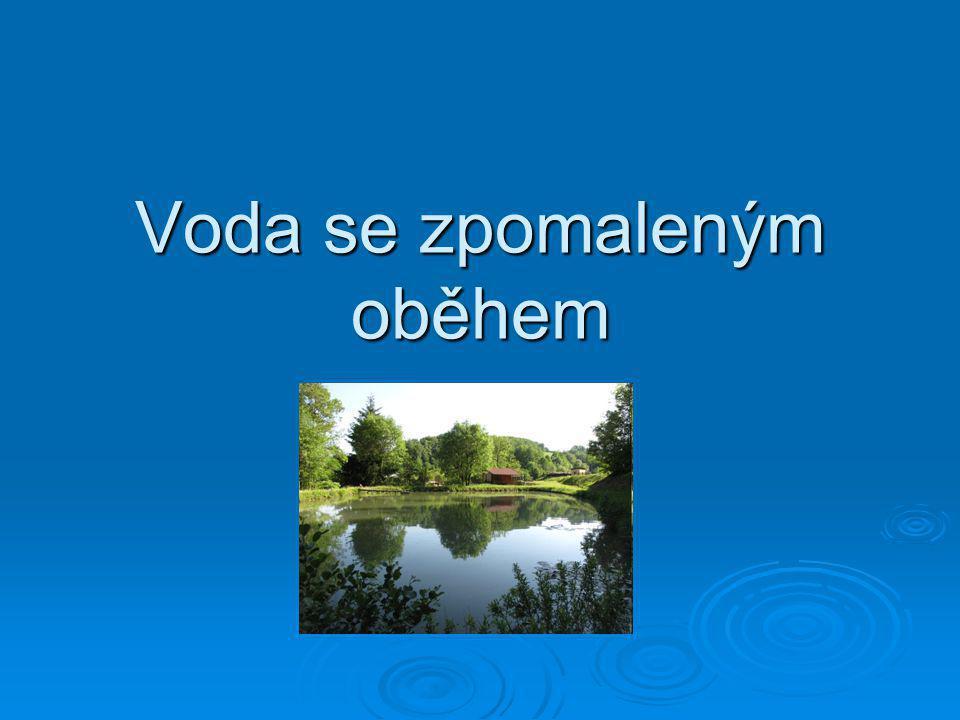 Patří sem:  jezera  bažiny  rybníky  přehrady