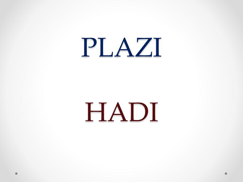 PLAZI HADI