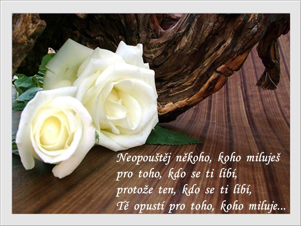 Neopouštěj někoho, koho miluješ pro toho, kdo se ti líbí, protože ten, kdo se ti líbí, Tě opustí pro toho, koho miluje...