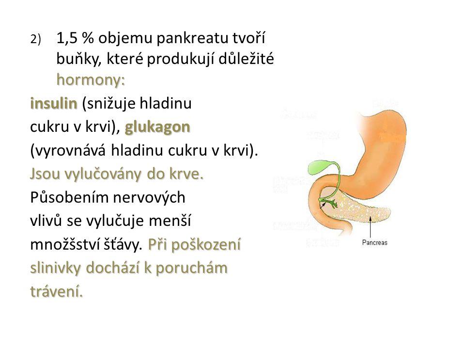hormony: 2) 1,5 % objemu pankreatu tvoří buňky, které produkují důležité hormony: insulin insulin (snižuje hladinu glukagon cukru v krvi), glukagon (vyrovnává hladinu cukru v krvi).