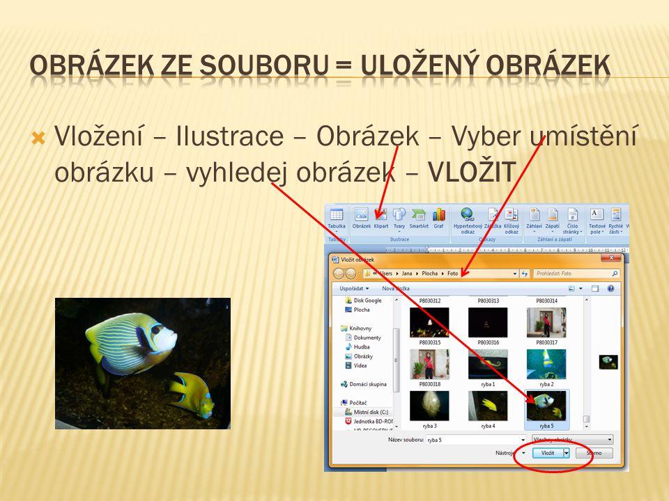  Vložení – Ilustrace – Obrázek – Vyber umístění obrázku – vyhledej obrázek – VLOŽIT