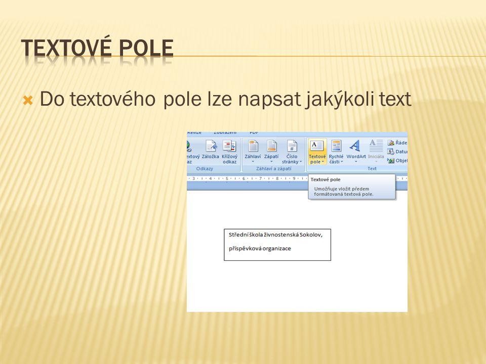  Do textového pole lze napsat jakýkoli text