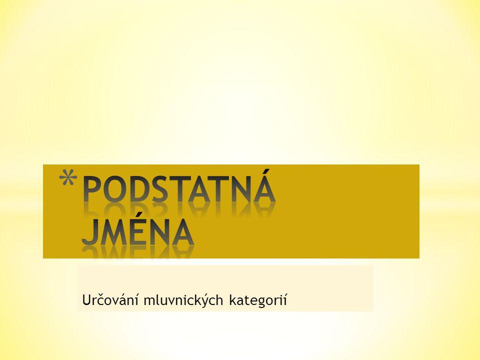 Podstatné jméno PádČísloRod k lesu po obědě do města Mirku.