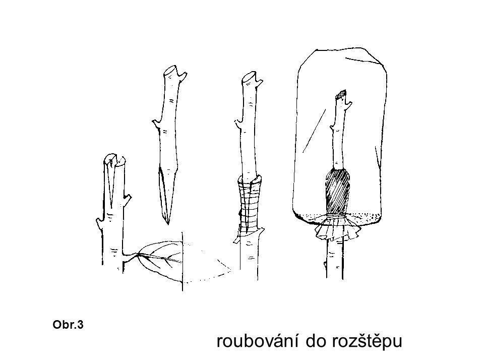 Obr.4