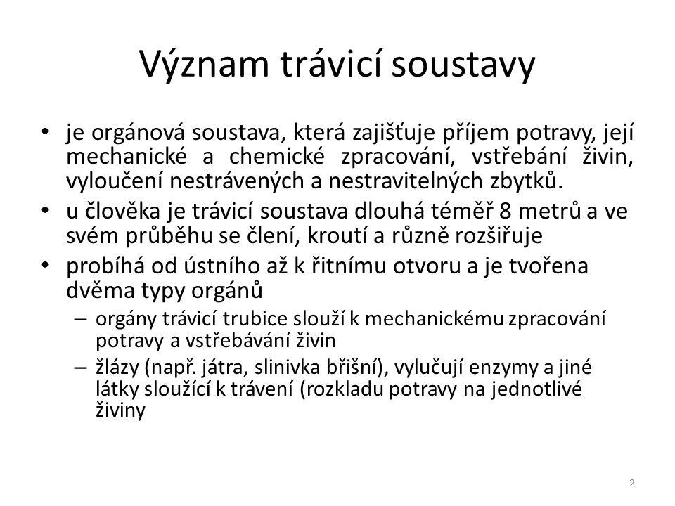 Stavba trávicí soustavy téměř všechny orgány trávicí trubice mají podobné uspořádání své stěny zpravidla má trávicí trubice čtyři rozlišitelné vrstvy: – sliznici – podslizniční vazivo – svalovinu – vazivový obal - serózu 3 1