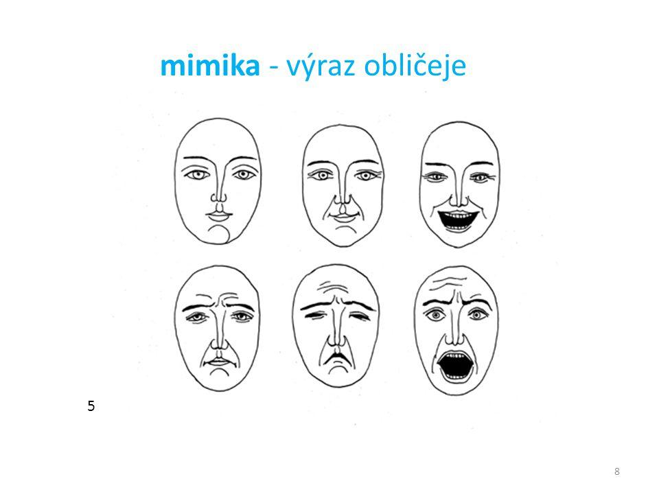 8 5 mimika - výraz obličeje