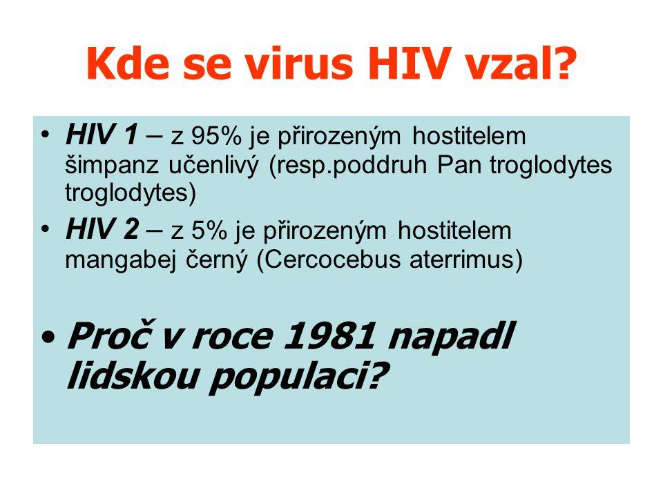 Kde se virus HIV vzal? HIV 1 – z 95% je přirozeným hostitelem šimpanz učenlivý (resp.poddruh Pan troglodytes troglodytes) HIV 2 – z 5% je přirozeným h