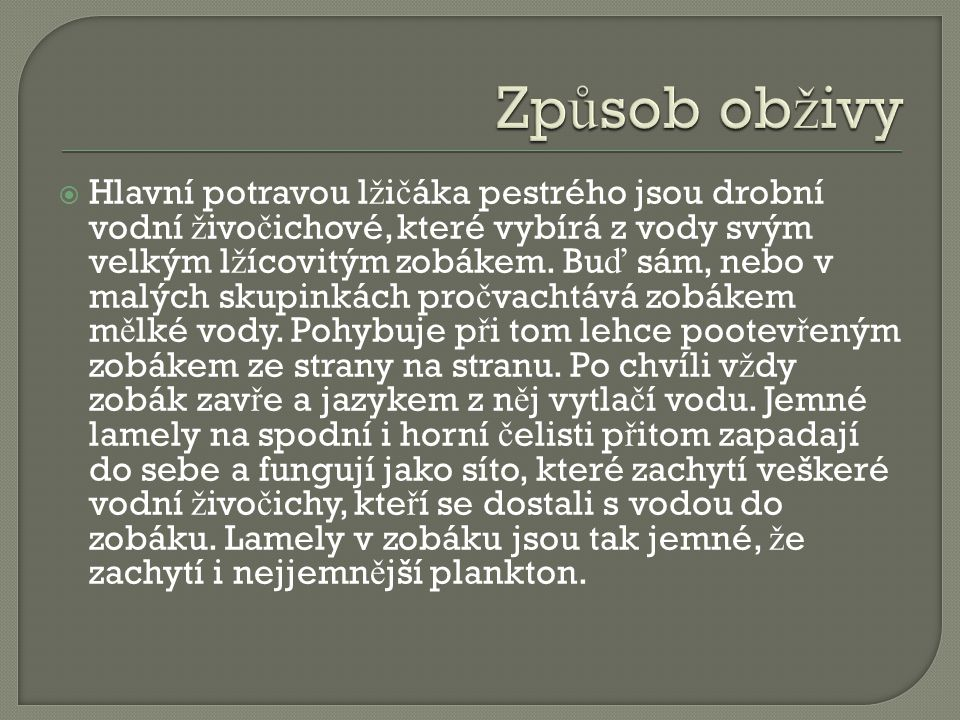  Pohlavní dosp ě lost: v 1.