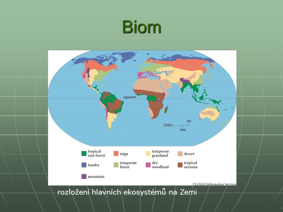 TUNDRA nejseverněji umístěný biom nejseverněji umístěný biom především lišejníky a mechy především lišejníky a mechy na vlhčích místech travinobylinná společenstva s ojedinělým výskytem bříz a vrb na vlhčích místech travinobylinná společenstva s ojedinělým výskytem bříz a vrb průměrné roční teploty -13 až -5 ºC průměrné roční teploty -13 až -5 ºC živočichové – sob, pižmoň, lumíci, zajíc bělák, liška polární, sovice sněžní živočichové – sob, pižmoň, lumíci, zajíc bělák, liška polární, sovice sněžní