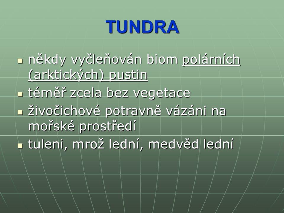 TUNDRA někdy vyčleňován biom polárních (arktických) pustin někdy vyčleňován biom polárních (arktických) pustin téměř zcela bez vegetace téměř zcela be