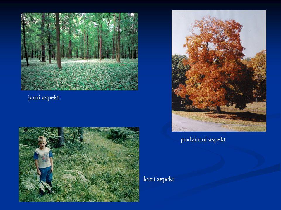 jarní aspekt letní aspekt podzimní aspekt