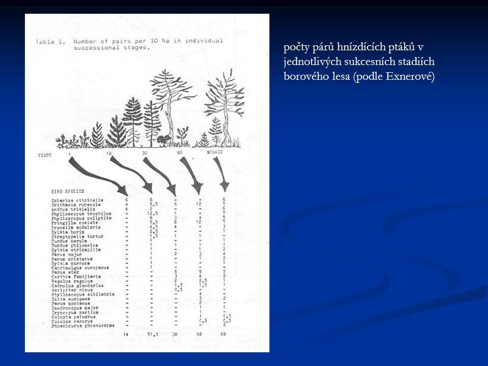 počty párů hnízdících ptáků v jednotlivých sukcesních stadiích borového lesa (podle Exnerové)