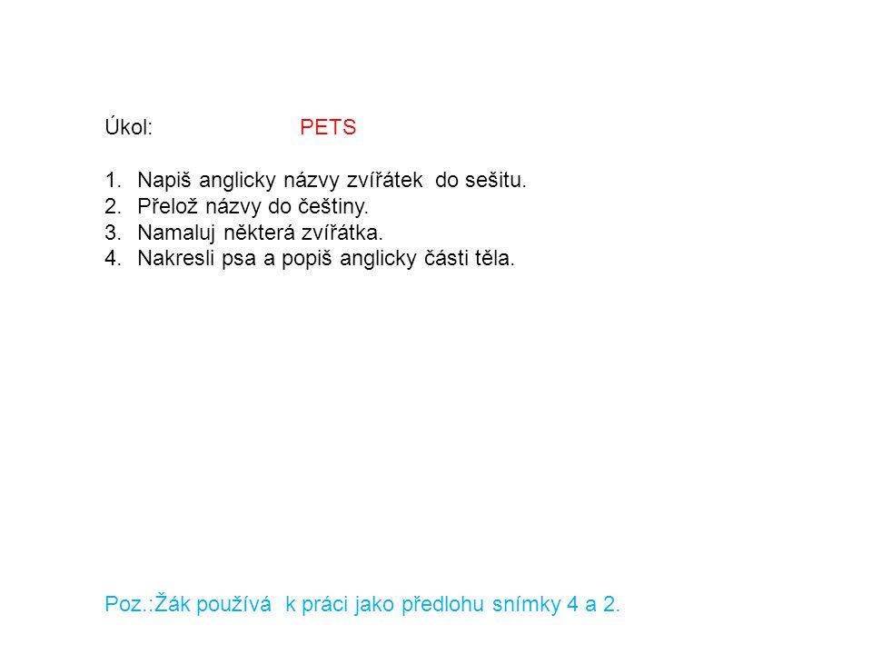 Úkol: PETS 1.Napiš anglicky názvy zvířátek do sešitu. 2.Přelož názvy do češtiny. 3.Namaluj některá zvířátka. 4.Nakresli psa a popiš anglicky části těl
