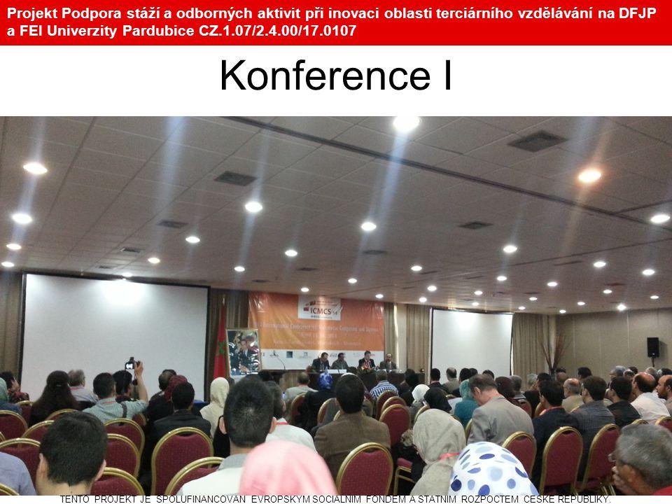Projekt Podpora stáží a odborných aktivit při inovaci oblasti terciárního vzdělávání na DFJP a FEI Univerzity Pardubice CZ.1.07/2.4.00/17.0107 Konfere