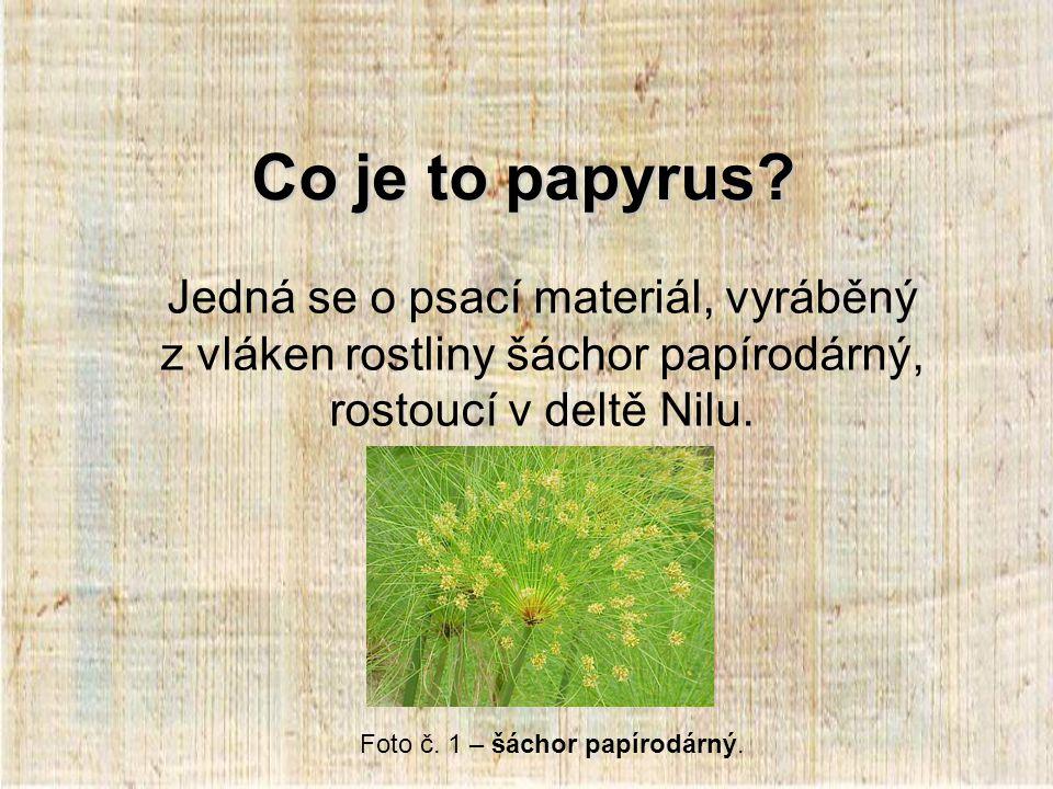 Způsob psaní Na papyrus se psalo perem (calamus), které se máčelo v inkoustu.