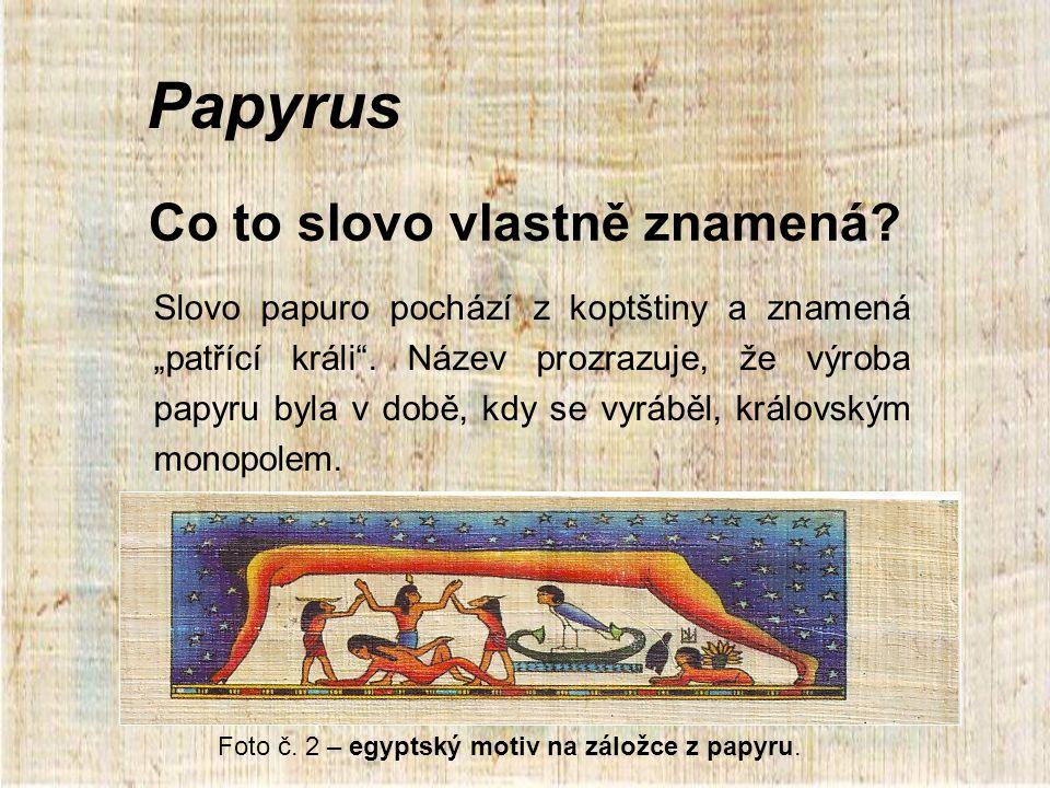 """Co to slovo vlastně znamená.Slovo papuro pochází z koptštiny a znamená """"patřící králi ."""