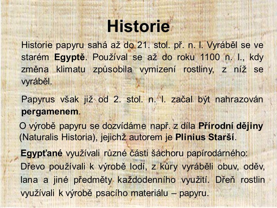 Historie Historie papyru sahá až do 21.stol. př. n.