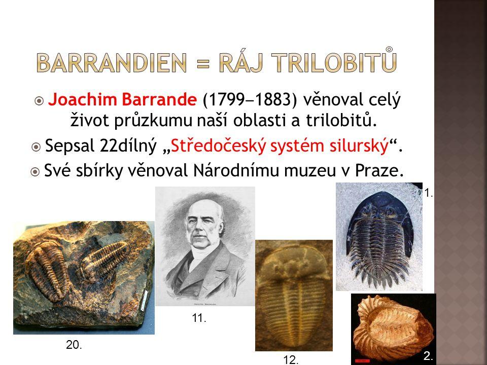  Joachim Barrande (1799 ‒ 1883) věnoval celý život průzkumu naší oblasti a trilobitů.