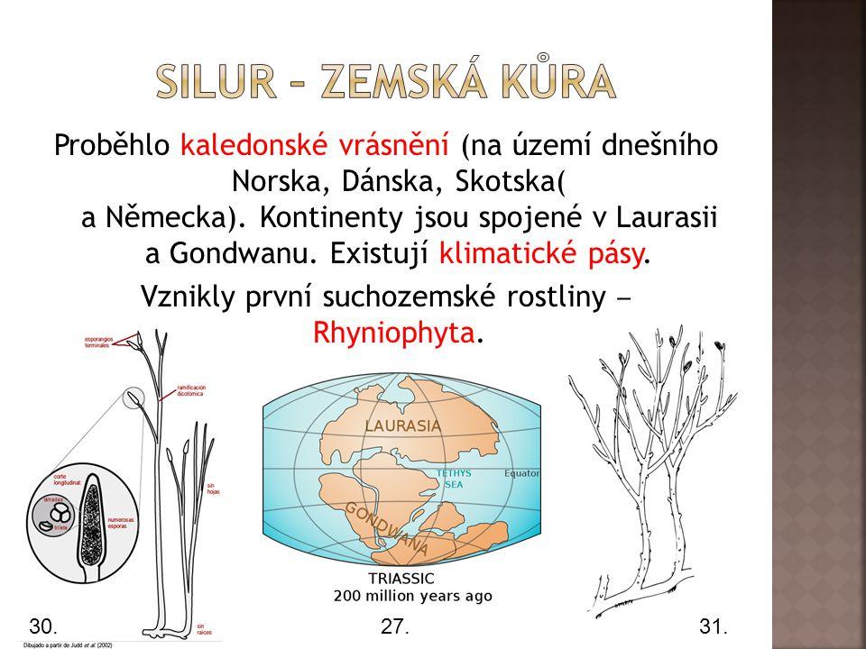 Proběhlo kaledonské vrásnění (na území dnešního Norska, Dánska, Skotska( a Německa).