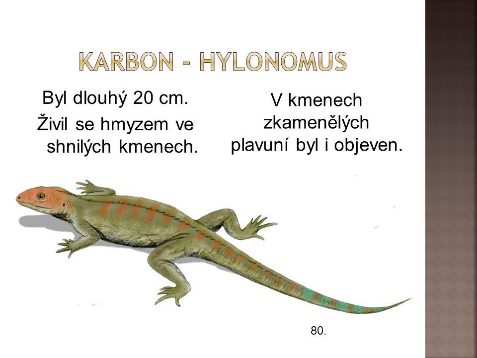 Byl dlouhý 20 cm.Živil se hmyzem ve shnilých kmenech.