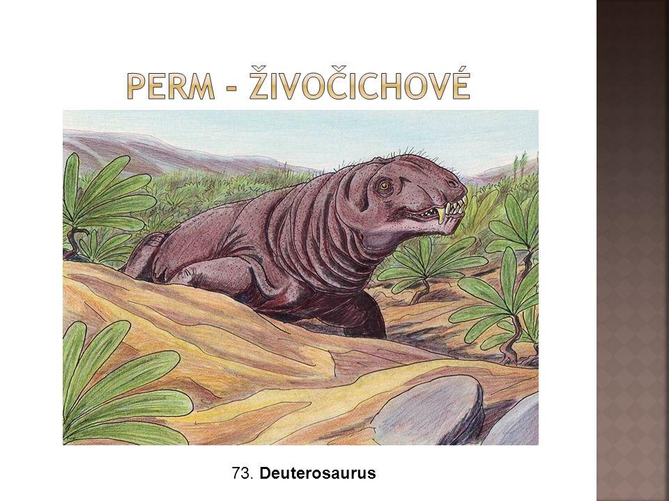 73. Deuterosaurus