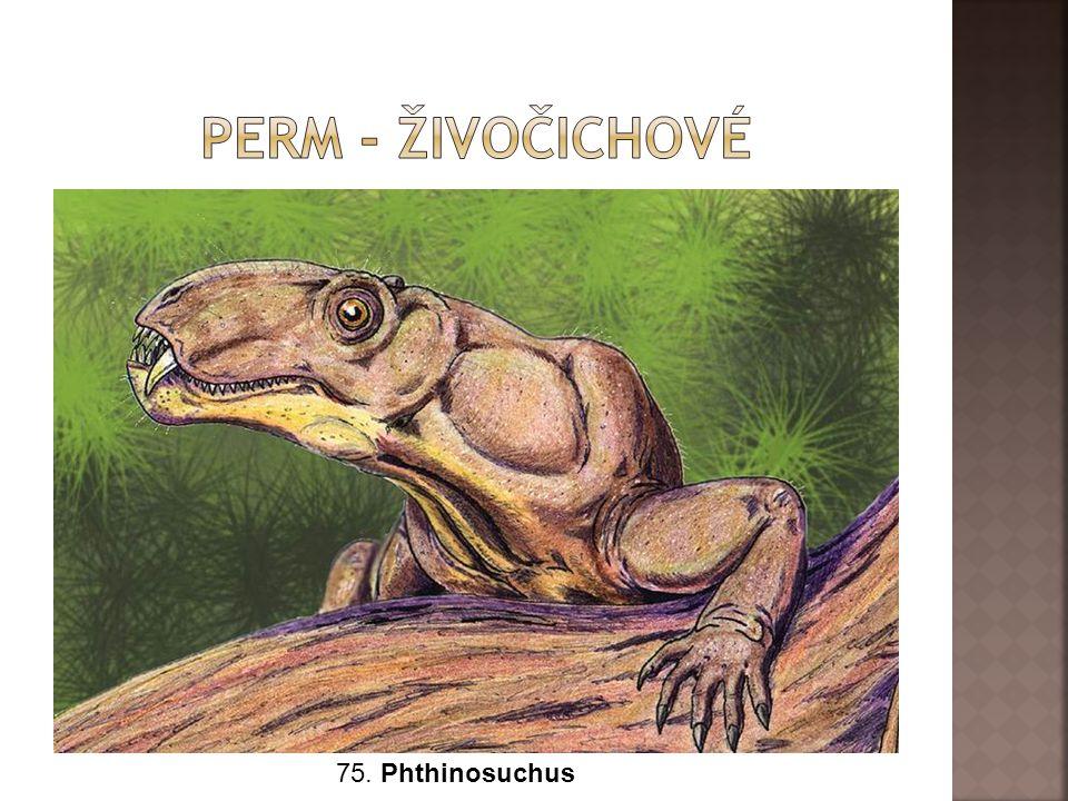 75. Phthinosuchus