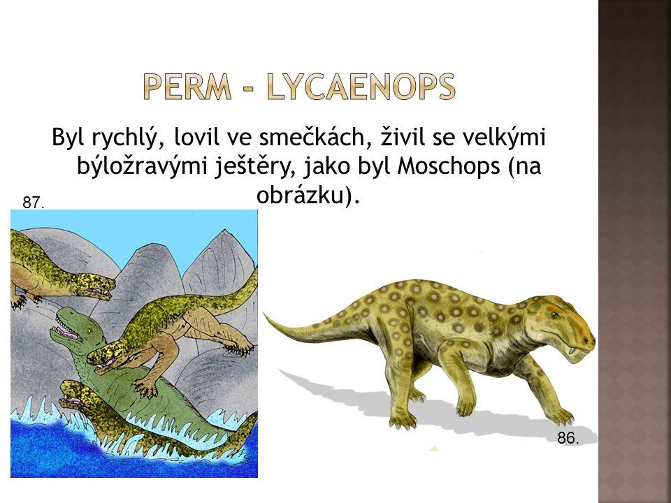 Byl rychlý, lovil ve smečkách, živil se velkými býložravými ještěry, jako byl Moschops (na obrázku).