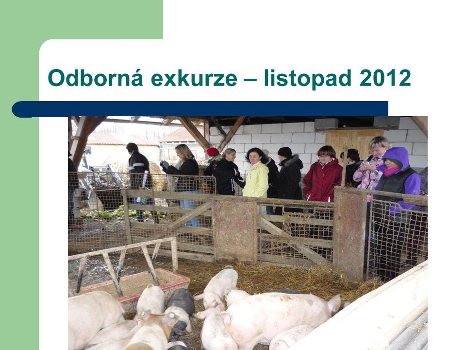 Odborná exkurze – listopad 2012
