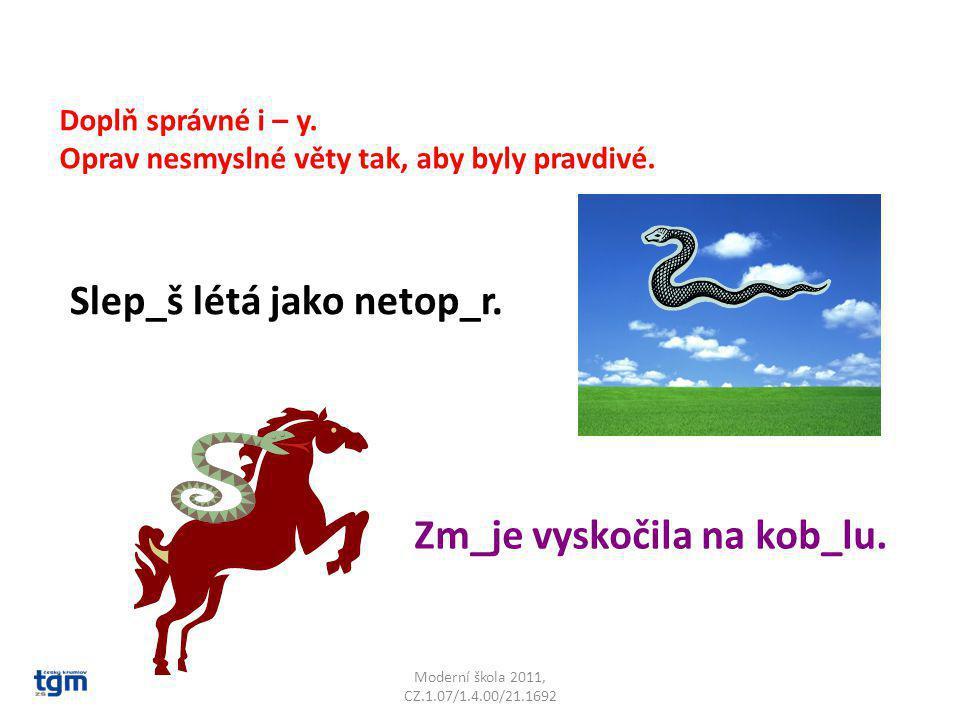 Moderní škola 2011, CZ.1.07/1.4.00/21.1692 Co znamenají věty: Zloděj piká ve vězení.