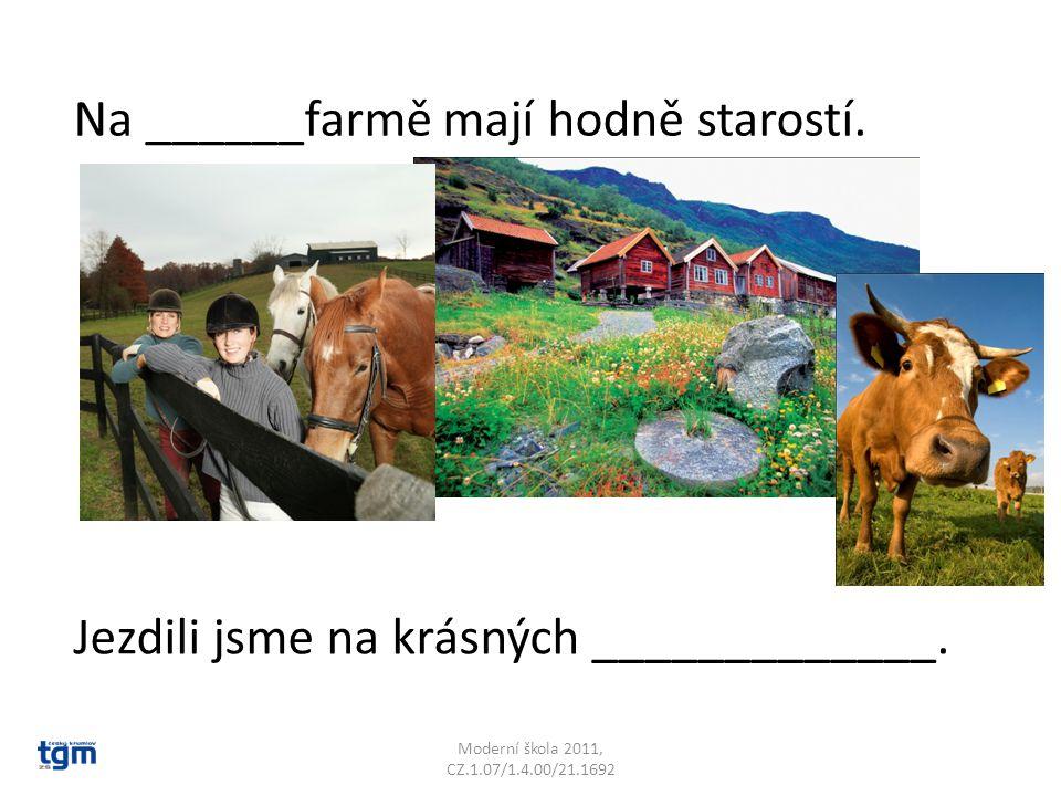 Moderní škola 2011, CZ.1.07/1.4.00/21.1692 Na ______farmě mají hodně starostí. Jezdili jsme na krásných _____________.
