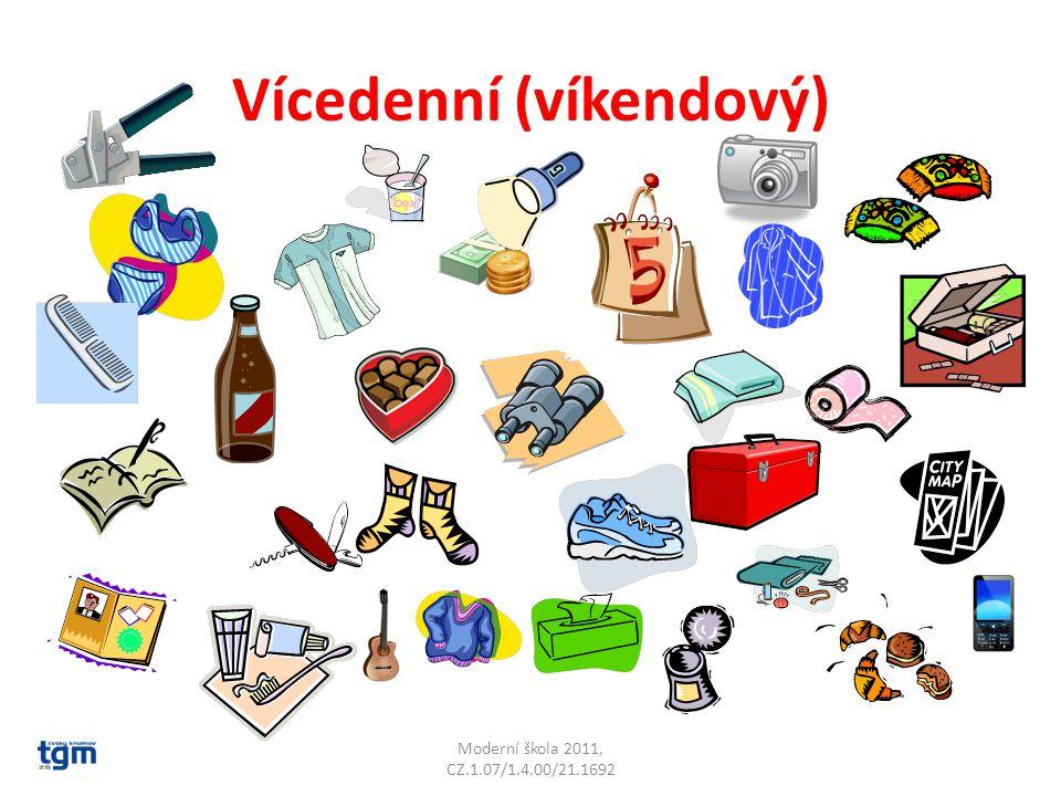 Vícedenní (víkendový) Moderní škola 2011, CZ.1.07/1.4.00/21.1692