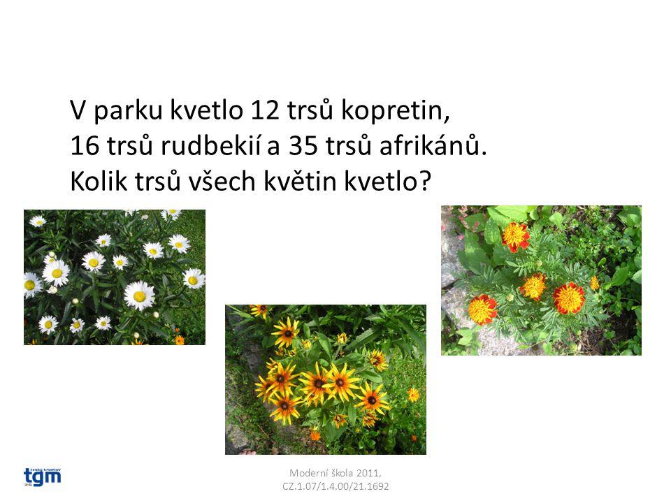 Moderní škola 2011, CZ.1.07/1.4.00/21.1692 V parku kvetlo 12 trsů kopretin, 16 trsů rudbekií a 35 trsů afrikánů. Kolik trsů všech květin kvetlo?