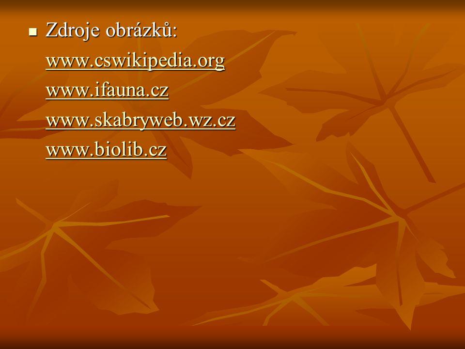 Zdroje obrázků: Zdroje obrázků: www.cswikipedia.org www.ifauna.cz www.skabryweb.wz.cz www.biolib.cz