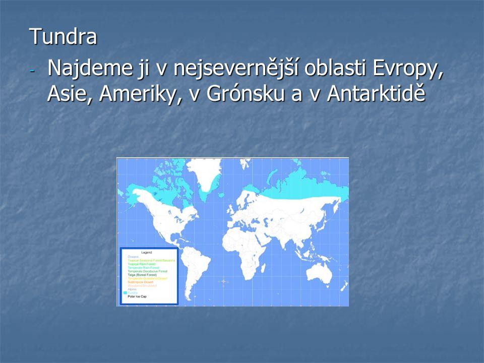 Tundra - Najdeme ji v nejsevernější oblasti Evropy, Asie, Ameriky, v Grónsku a v Antarktidě