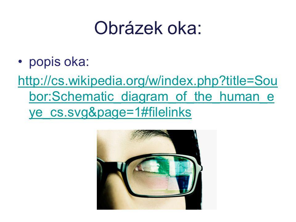 Optická soustava oka rohovka komorová tekutina čočka sklivec další