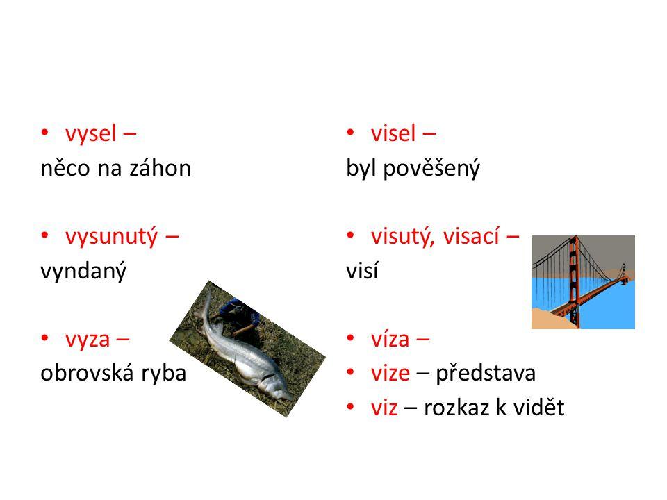 vysel – něco na záhon vysunutý – vyndaný vyza – obrovská ryba visel – byl pověšený visutý, visací – visí víza – vize – představa viz – rozkaz k vidět