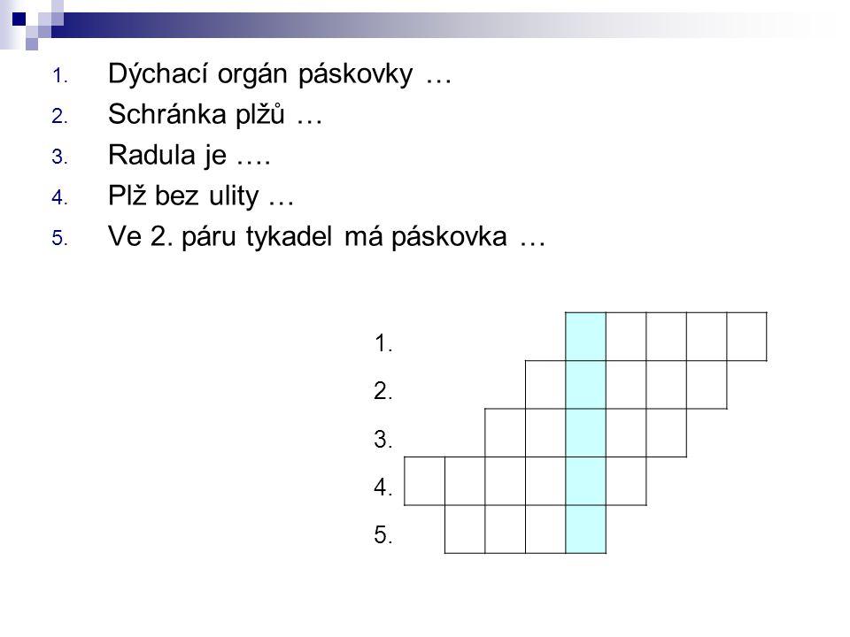 1. Dýchací orgán páskovky … 2. Schránka plžů … 3. Radula je …. 4. Plž bez ulity … 5. Ve 2. páru tykadel má páskovka … 1. 2. 3. 4. 5.
