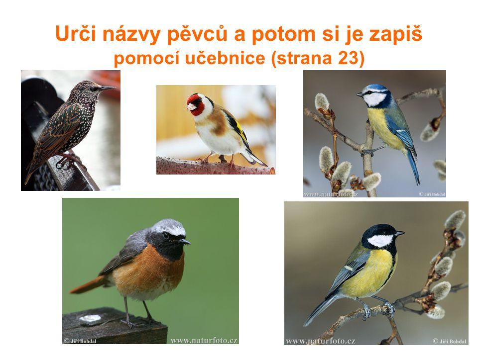 Úkoly 1.Proč jsou drobní ptáci v sadu člověku užiteční.