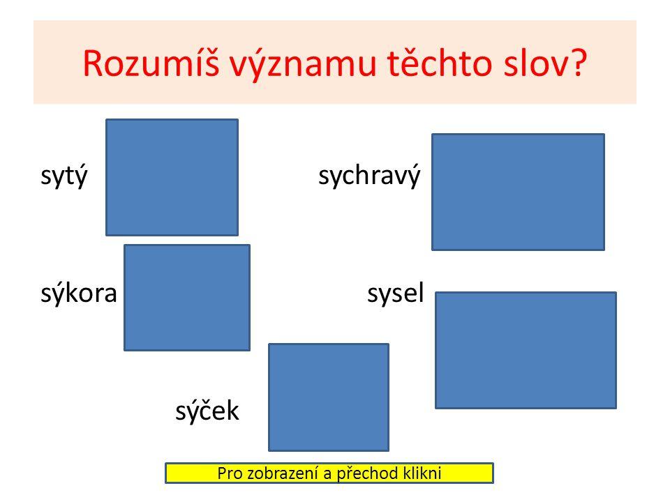 Rozumíš významu těchto slov? sytý sychravý sýkora sysel sýček Pro zobrazení a přechod klikni
