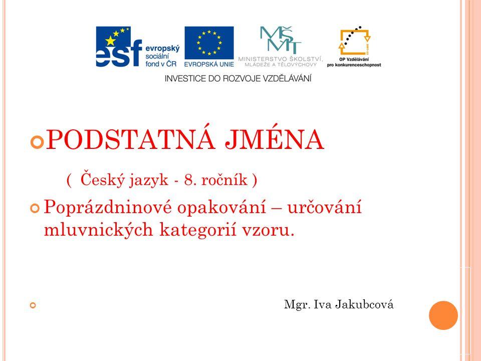 PODSTATNÁ JMÉNA ( Český jazyk - 8. ročník ) Poprázdninové opakování – určování mluvnických kategorií vzoru. Mgr. Iva Jakubcová