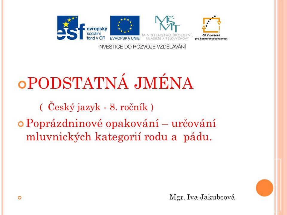 PODSTATNÁ JMÉNA ( Český jazyk - 8.
