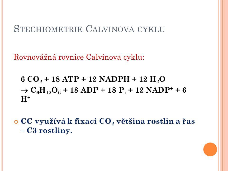S TECHIOMETRIE C ALVINOVA CYKLU Rovnovážná rovnice Calvinova cyklu: 6 CO 2 + 18 ATP + 12 NADPH + 12 H 2 O  C 6 H 12 O 6 + 18 ADP + 18 P i + 12 NADP +