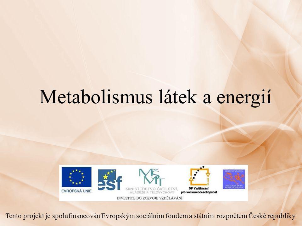Metabolismus látek a energií Tento projekt je spolufinancován Evropským sociálním fondem a státním rozpočtem České republiky